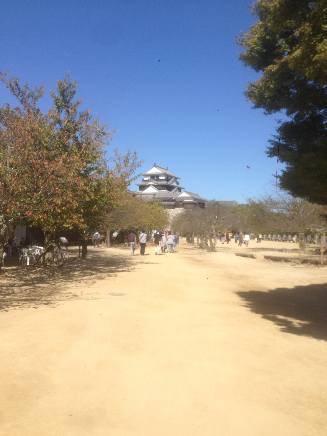 初✖️四国✖️旅行へ